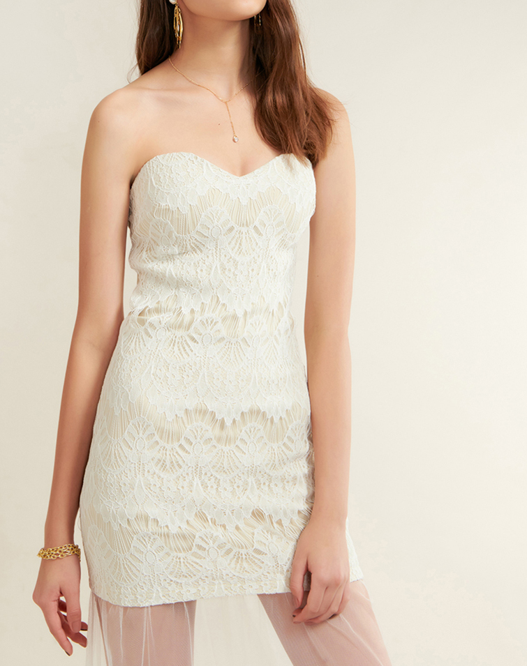 MESH IN LACE FISHTAIL DRESS